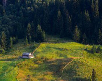 12 грудня відбудеться навчальний тренінг «Створюємо успішну агросадибу: зелений агротуризм🌾», організований Сільськогосподарським дорадчим центром «Фермерська Країна».